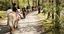 Ponyreiten in
